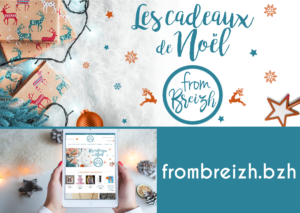 Elements web Emailing from breizh