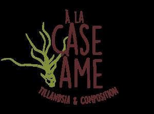 aaska logo a la case ame tillandsia graphisme bretagne morbihan