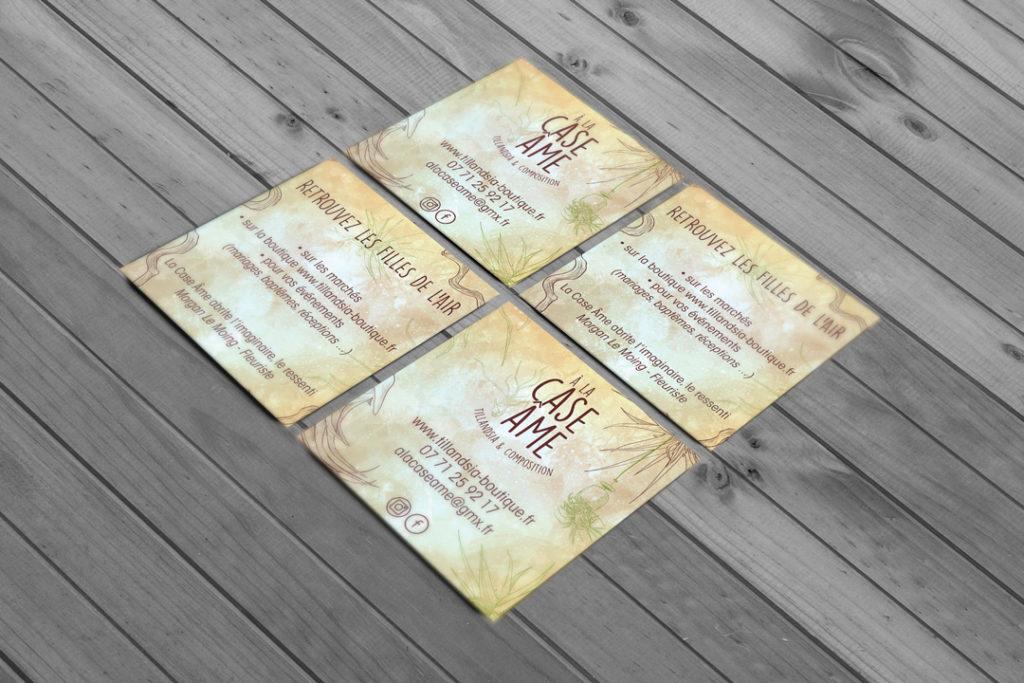 aaska tillandsia carte de visite a la case ame